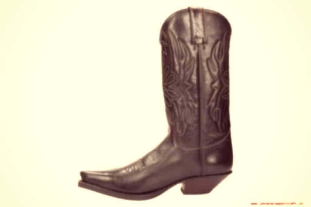 Sendra boots camperas divertidas